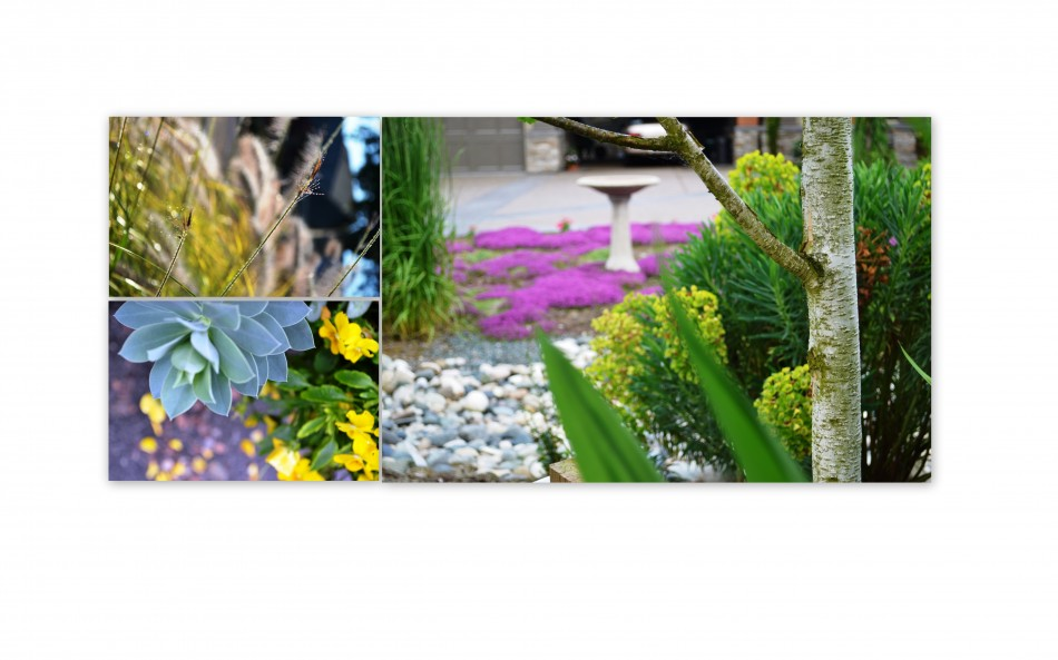 Landscaper Services in Abbotsford, Port Moody, Mission, Langley BC