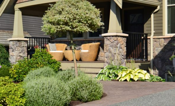eagle mountain landscapers