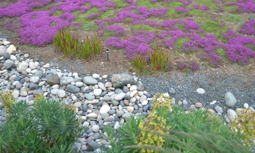 eco conscious landscaping